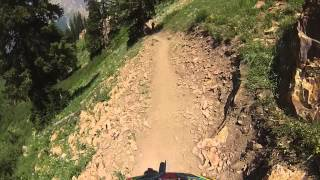 Big Mtn Trail at Snowbird ski resort Mtn Bike Big Mountain Trail Utah