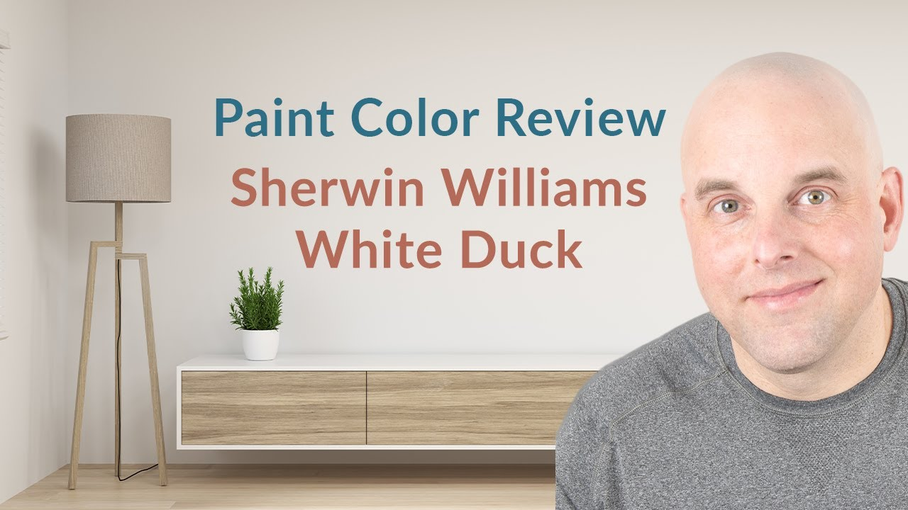 Sherwin Williams City Loft Color Review Youtube