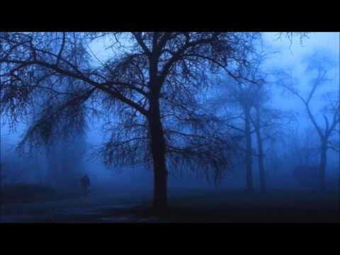 You Haunt Me - Lisa Hannigan (Lyric Video)