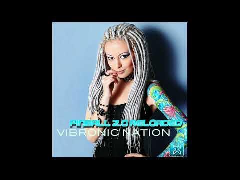 Vibronic Nation - Pinball 2 0 Reloaded 2018 (Radio Edit)