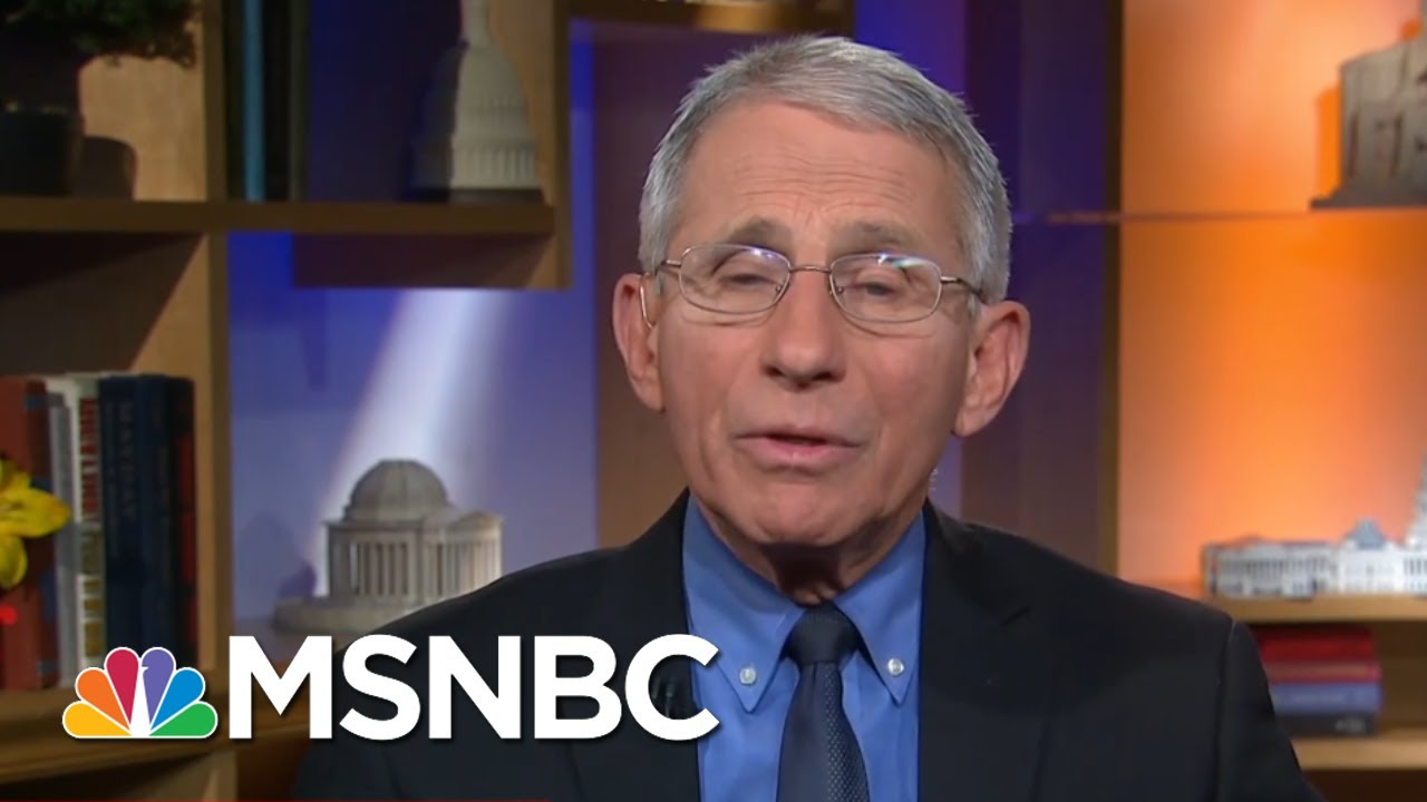 White House's Attempt To Discredit Dr. Anthony Fauci Poses Long-Term Risk - Day That Was | MSNBC