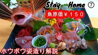 【Stay Home】150円のホウボウで姿造り 家で一緒にやってみよう