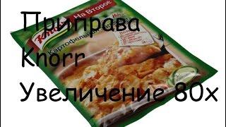 Приправа Knorr | Под микроскопом | Увеличение 80х