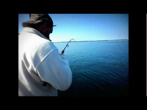 Torskfiske med Landskronabåten på grundt vatten i Öresund