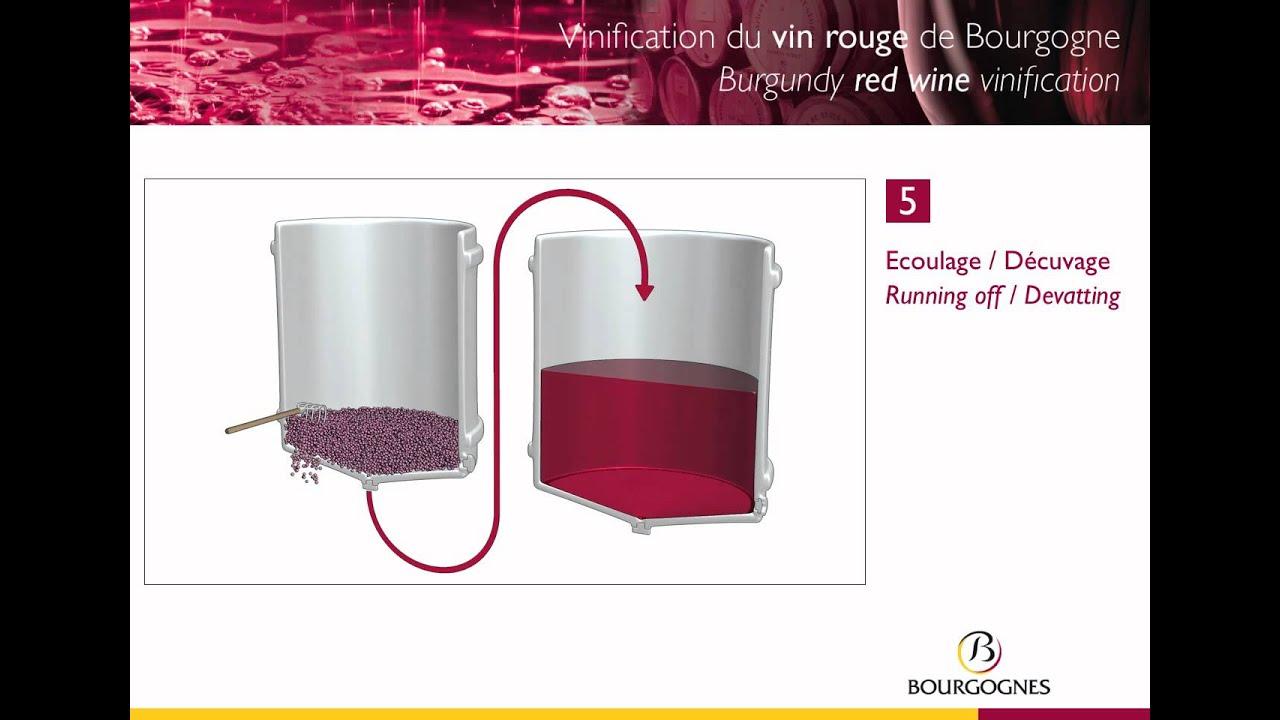 Bien-aimé Vinification des vins rouges de Bourgogne / Vinification of red  JH35