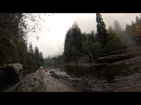 Lake merwin spawning kokanee 2015 youtube for Lake merwin fishing