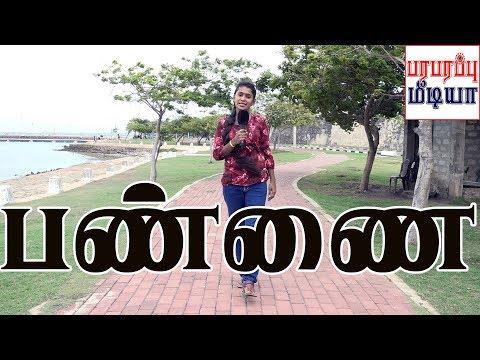 யாழ்ப்பாணம் வரவேற்கிறது | Jaffna Today Yazhpanam | பண்ணை | Pannai | Paraparapu Media