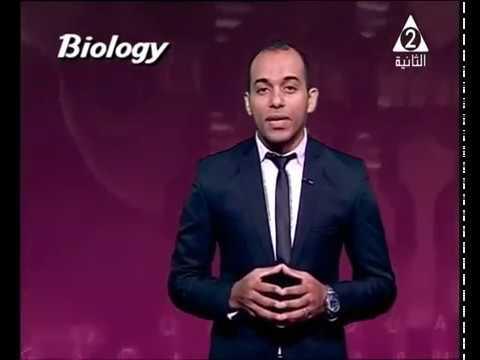04-03-2017 أحياء لغات التليفزيون المصري Immunity in living organisms