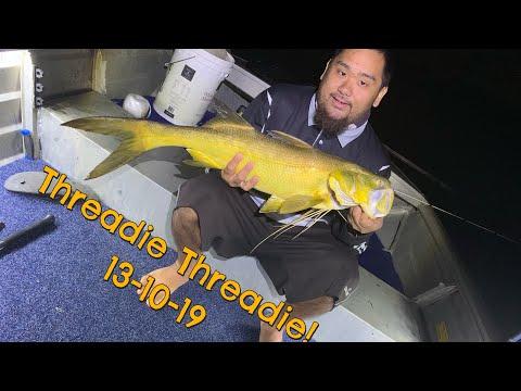 Thready Fishing Brisbane River 04 - 10 -2019
