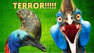 QUAL É A AVE MAIS PERIGOSA DO MUNDO? O casuar é um animal diferente que assusta muita gente!!!