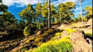 Arash ft Helena Arash (subtitulos en español)