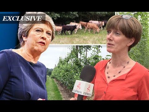 EXCLUSIVE What Brexit really means for British farmers and for our food supply