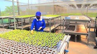 """, Phóng Sự Việt Nam : Quảng Ninh tăng cường đầu tư """"chất xám"""" cho sản xuất nông nghiệp"""