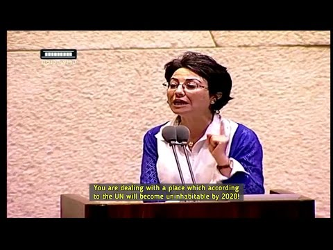 Haneen Zoabi, Oren Hazan - backlash over Israeli murder on the high seas