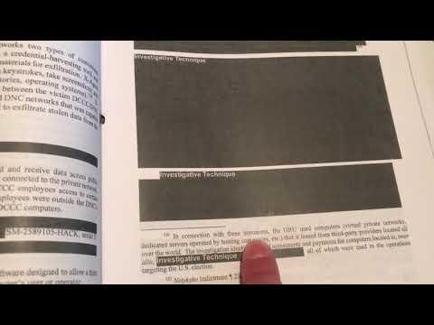 Examining the Mueller Report
