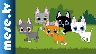 Five Little Cats (animation, song for children)