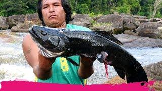 Fishing RIVER MONSTERS in Suriname + Jungle Trek   Palumeu, Suriname