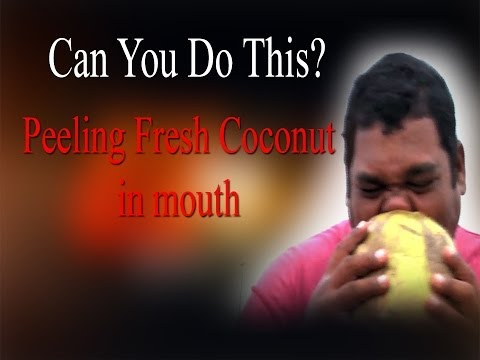 Incredible.. He can peel coconuts Using  Only His Teeth and break them with empty  ... you Can Do this  ?  malika transgender Show   Music Details   Track One  Track Name = Hydra Artist = Huma - Huma Album = YouTube Audio Library   Track Two & Three  Track Name = Tidal Wave Artist = Silent Partner Album = YouTube Audio Library  Track Four  Track Name = Voodoo Like You do Artist = Huma - Huma Album = YouTube Audio Library  Track Five & Six Track Name = Warrior Strife Artist = Jingle Punks Album = YouTube Audio Library  Track Seven  Track Name = Voodoo Like You do Artist = Huma - Huma Album = YouTube Audio Library  http://www.ndtv.com BBC Tamil: http://www.bbc.co.uk/tamil INDIAGLITZ :http://www.indiaglitz.com/channels/tamil/default.asp  ONE INDIA: http://tamil.oneindia.in BEHINDWOODS :http://behindwoods.com VIKATAN http://www.vikatan.com the HINDU: http://tamil.thehindu.com DINAMALAR: www.dinamalar.com MAALAIMALAR http://www.maalaimalar.com/StoryListing/StoryListing.aspx?NavId=18&NavsId=1 TIMESOFINDIA http://timesofindia.indiatimes.com http://www.timesnow.tv HEADLINES TODAY: http://headlinestoday.intoday.in PUTHIYATHALAIMURAI http://www.puthiyathalaimurai.tv VIJAY TV:http://www.youtube.com/user/STARVIJAY  -~-~~-~~~-~~-~- Please watch: