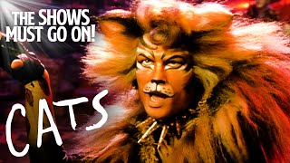 'The Rum Tum Tugger' John Partridge | Cats The Musical