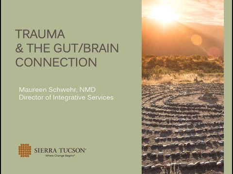 The Gut Brain Trauma Connection with Dr. Maureen Schwehr