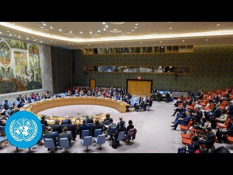 "Palestine/Israel: ""Fighting must stop. It must stop immediately."" - UN Security Council Open Debate"