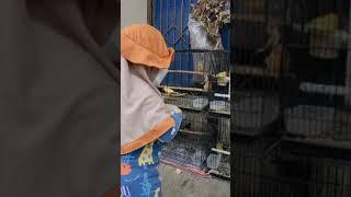 Balita Bermasker Asyik Menikmati Suara Kicauan Burung