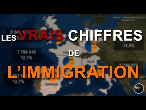 LES VRAIS CHIFFRES DE L'IMMIGRATION (en Cartes)