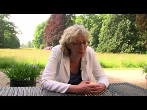 BENG! Utrechts Landschap (interview)