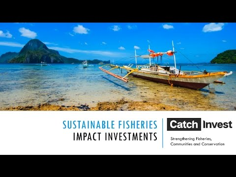 Impact Investing to Fund Marine Conservation