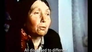 фільм Ой у полі древо :: film Drevo