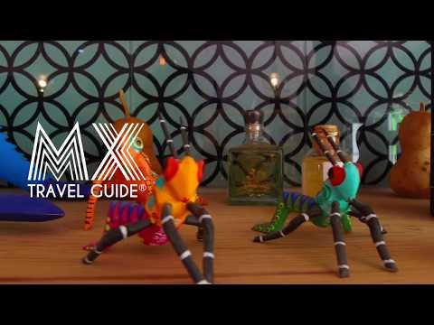 Mezcal Art I Mx Travel Guide I Mezcales de Guanajuato