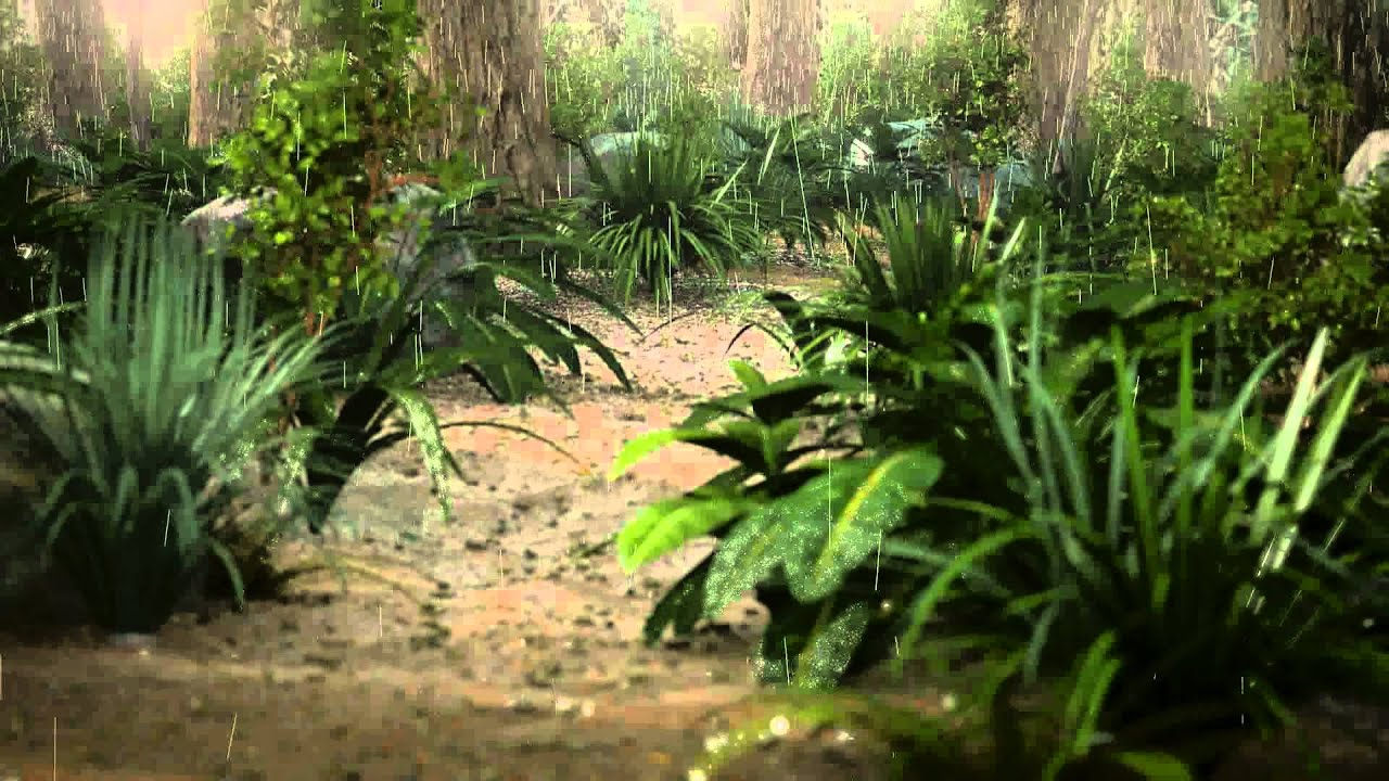 [HD] Rainforest Animation - Rain Tutorial teaser - YouTube - photo#27