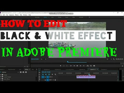 TUTORIAL BLACK & WHITE EFFECT IN ADOBE PREMIERE thumbnail
