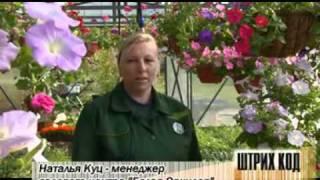 Цветы для сада и клумб(, 2011-05-20T12:27:08.000Z)
