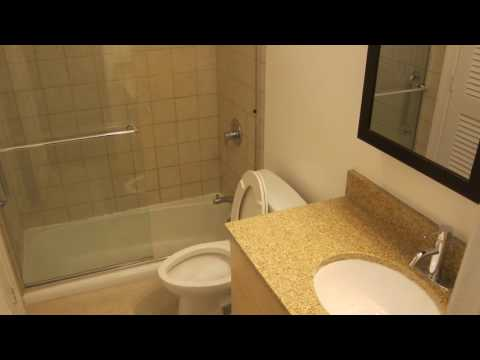 Lincoln Park Condo Remodel - General Contractor & Realtor