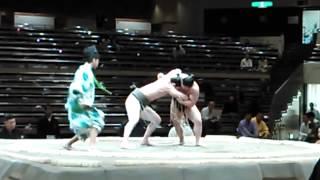 皇義龍 勝ち 平成27年大相撲五月場所 2015-05-10