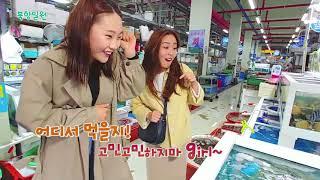 대한민국 테마여행 10선 8권역 남도맛기행