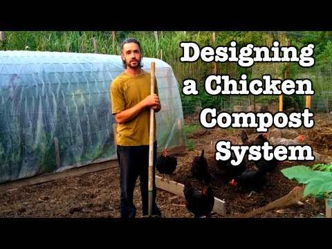 Chicken Compost - Designing the System