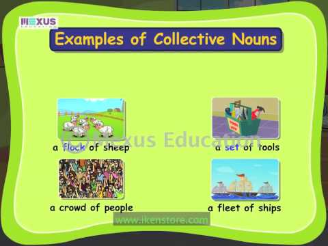 Learn English Grammar - What are Collective Nouns?