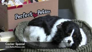 Submarino.com.br | Pelúcia Cocker Spaniel - Perfect Petzzz