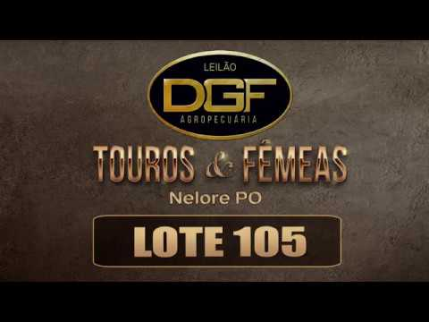 LOTE 105