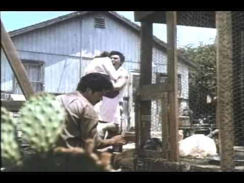 La Bamba 1987 Movie