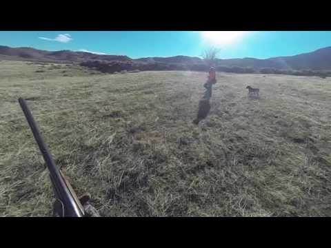 High River Hunting Preserve, Tehachapi, CA