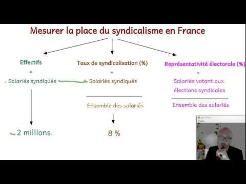 Les syndicats de salariés en France. (SOCIOLOGIE)