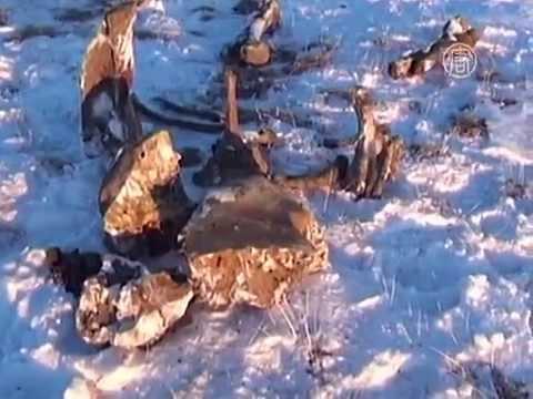 В Якутии обнаружили