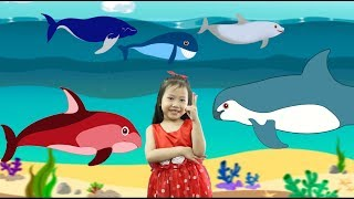 Kid Learn Number With Whales | Ten Little Baby Whale Song for Kids |  Learn Numbers For Kids