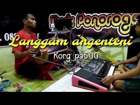 LANGGAM ANGENTENI KORG PA600