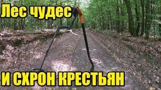 Империя серебро и СХРОН Лесной коп лето 2019