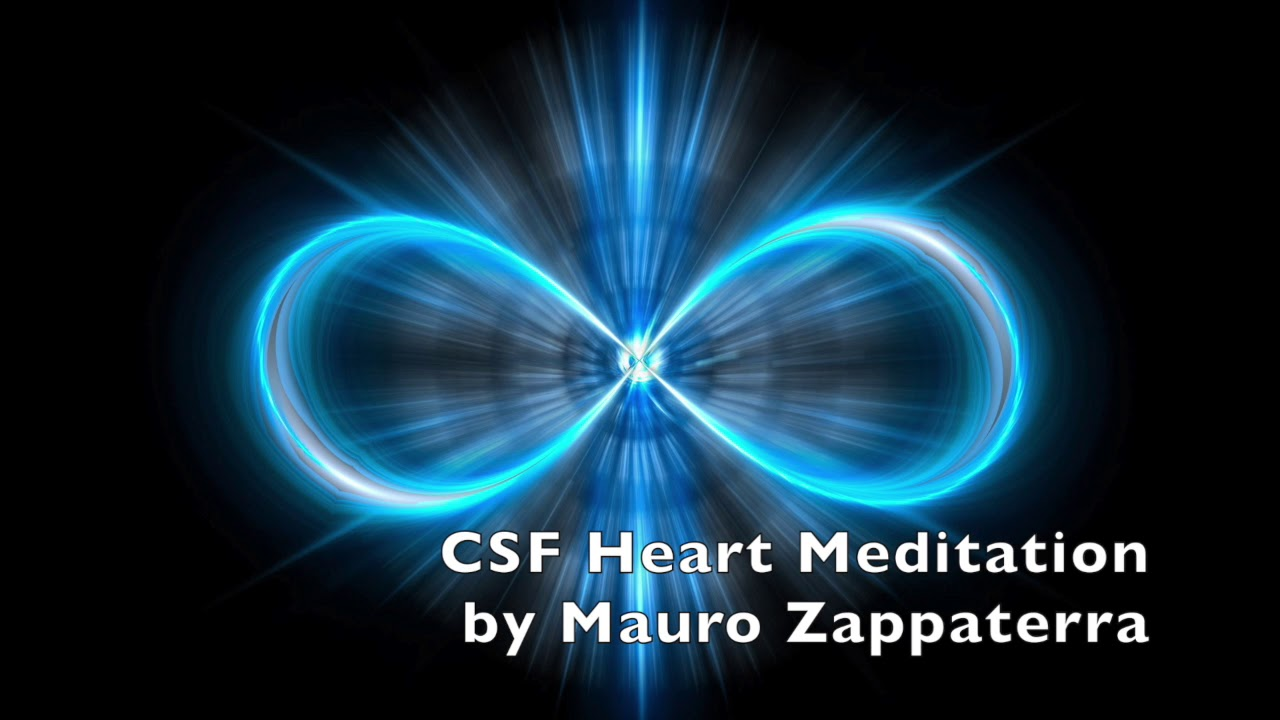 Dr  Mauro Zappaterra, CSF and the