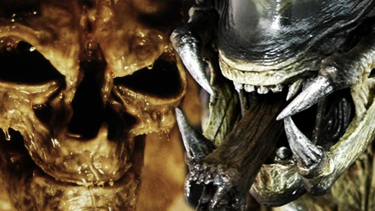 newborn alien vs predalien who wins youtube